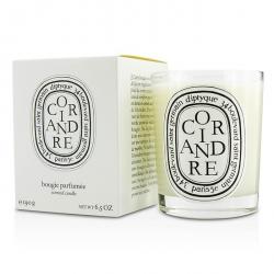 Scented Candle - Coriandre (Coriander)