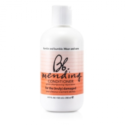 Mending Conditioner (For the Truly Damaged Hair)