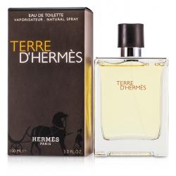 Terre D'Hermes Eau De Toilette Spray
