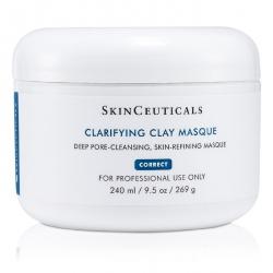 Clarifying Clay Masque (Salon Size)