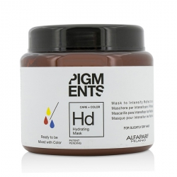 Pigments Hydrating Mask (For Slightly Dry Hair)
