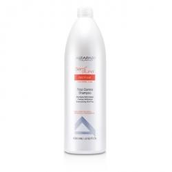 Semi Di Lino Discipline Frizz Control Shampoo (For Rebel Hair)